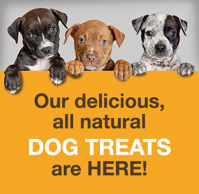 Our delicious, all natural DOG TREATS are HERE!